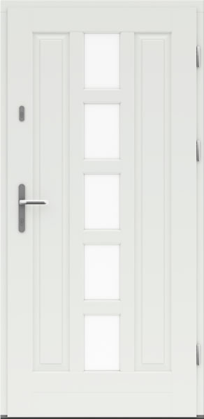 dveri-2 (5)