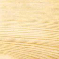 Сосна - дерево для окна